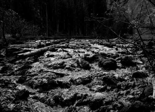 Taken at Grassy Lakes in Canmore, Alberta
